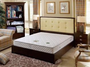 舒维雅 特硬床垫 老年人腰椎患者强护脊 加密弹簧保用50年