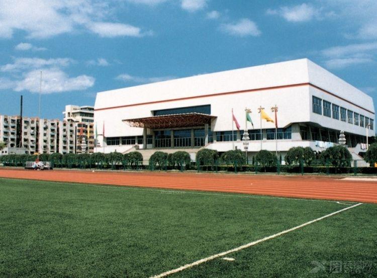 白色体育馆