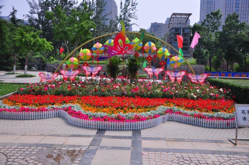 温馨花坛图片