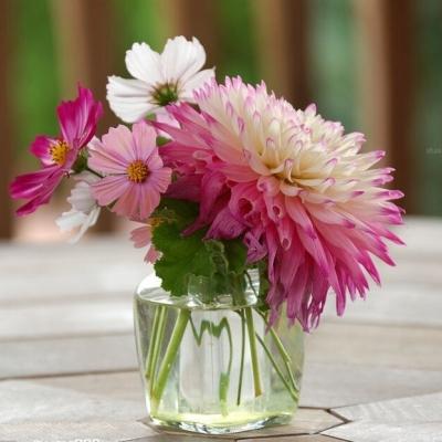 唯鲜花与美不可辜负 创意插花艺术美化你生活