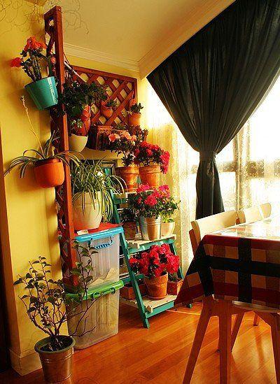 小露台的花园空间