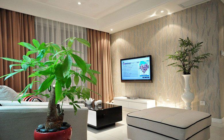 客厅绿植装饰